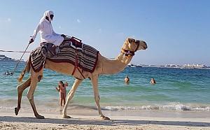DUBAI – o surpriza frumoasa pentru intreaga familie