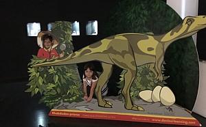 Locuri de explorat de la dinozauri la intreg Universul