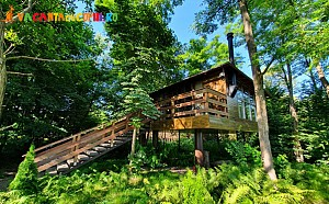 Un weekend la Porumbacu Treehouse