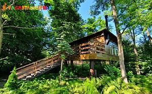 Un weekend la Porumbacu Treehouse